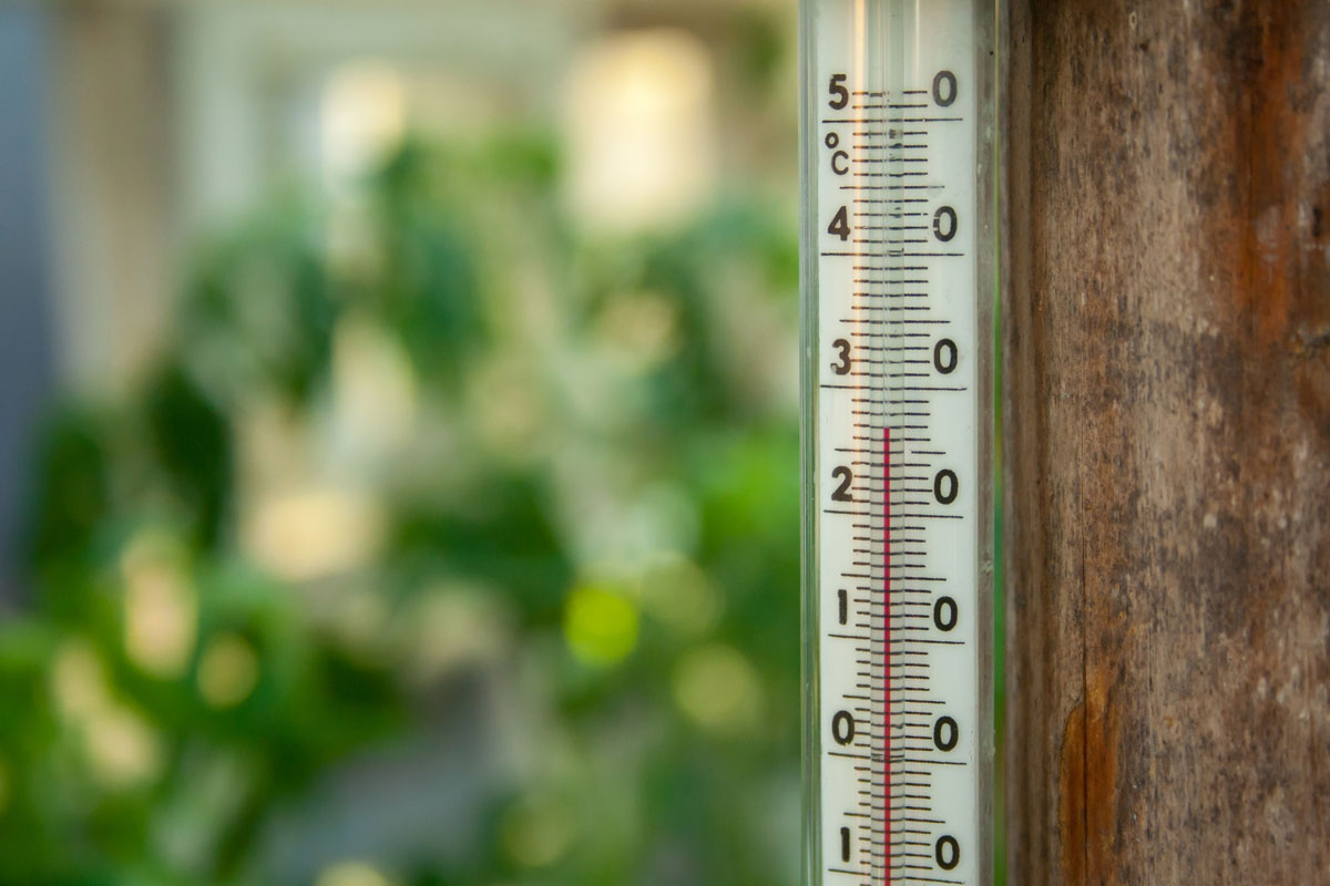 Отрегулируйте температуру