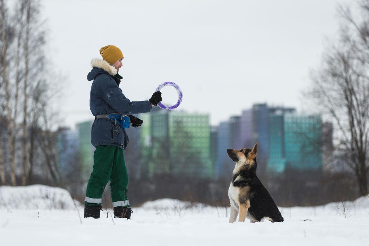 Хозяин с собакой на зимней прогулке