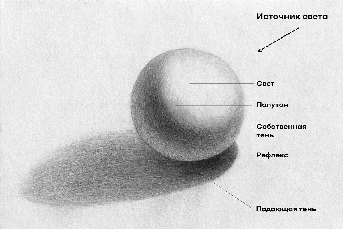 превращаем круг в сферу