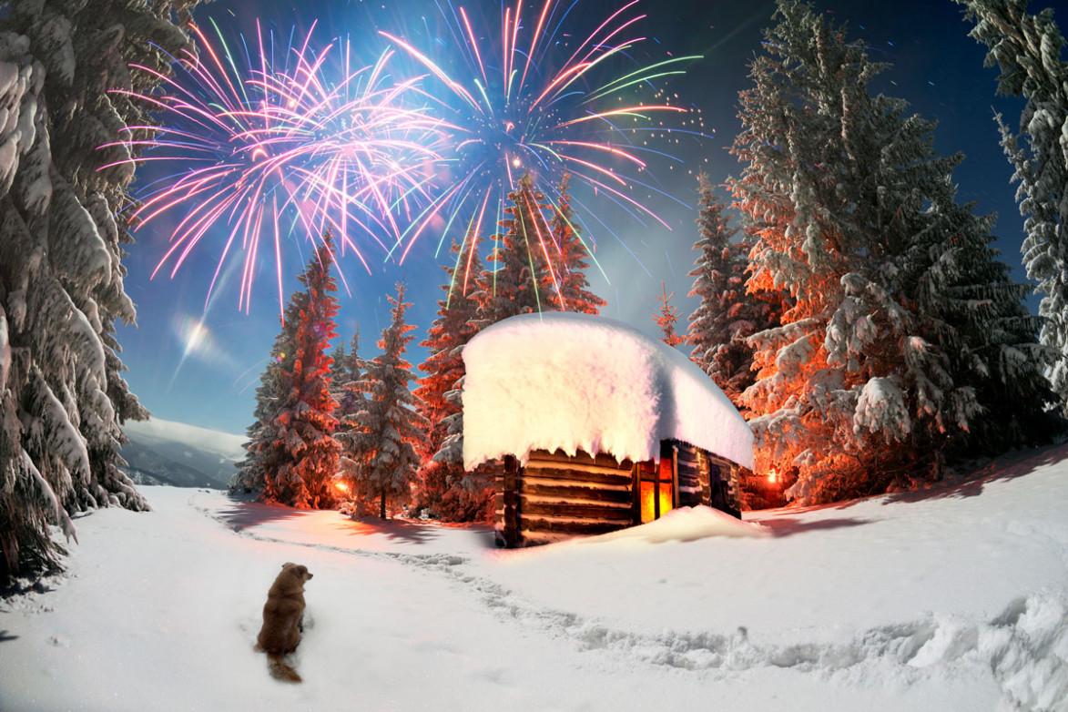 Новогодний салют на фоне леса