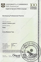 Сертификат Developing Professional Practice