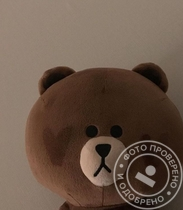 Сеул. Brown Bear Korean KPOP