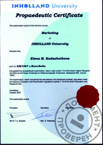 Certificate INHOLLAND University (маркетинг)