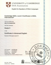 Сертификат CAE (Certificate in Advanced English), уровень C1.