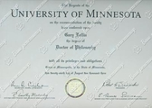Диплом University of Minnesota